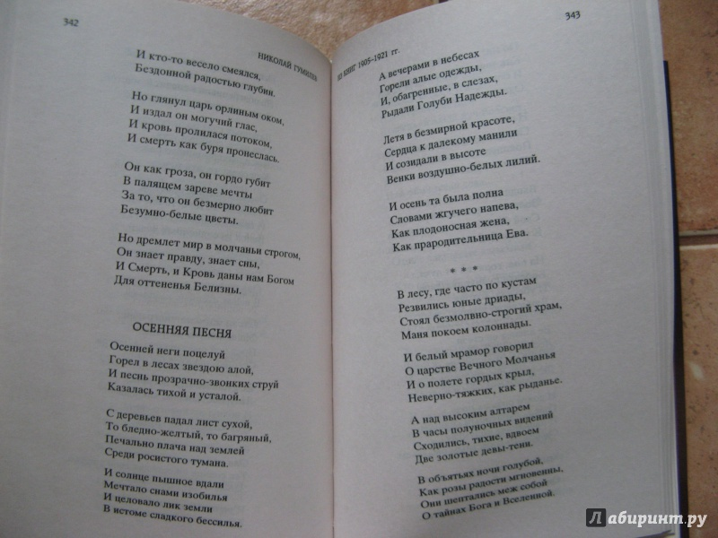 Гумилёв николай степанович романтические цветы