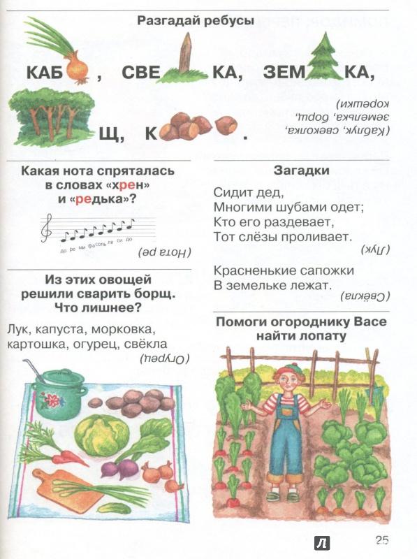 Иллюстрация 1 из 3 для Моя деревня:  Стихи, загадки, головоломки, считалки - Марина Дружинина   Лабиринт - книги. Источник: Лабиринт