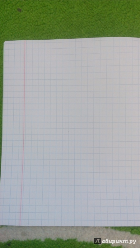 Иллюстрация 1 из 8 для Тетрадь школьная (12 листов, крупная клетка) (С840/6) | Лабиринт - канцтовы. Источник: maxiqwest
