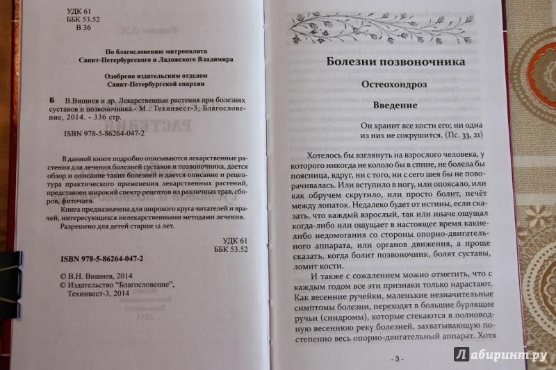 Иллюстрация 1 из 15 для Лекарственные растения при заболеваниях суставов и позвоночника - В. Вишнев | Лабиринт - книги. Источник: С  Т