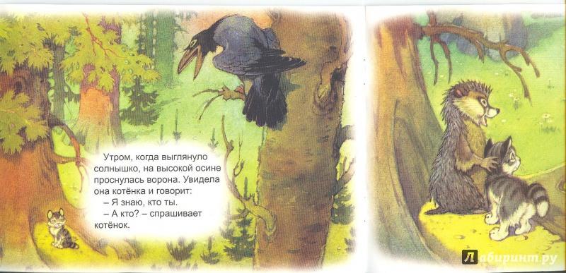 Иллюстрация 12 из 48 для Упрямый котёнок - Иван Белышев | Лабиринт - книги. Источник: Яровая Ирина