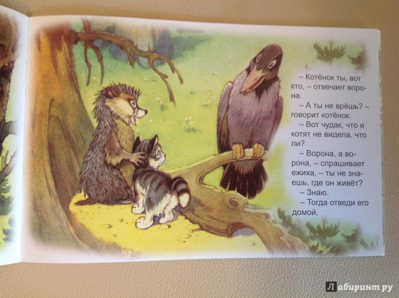 Иллюстрация 10 из 48 для Упрямый котёнок - Иван Белышев | Лабиринт - книги. Источник: Рыбьянова  Валентина Владимировна