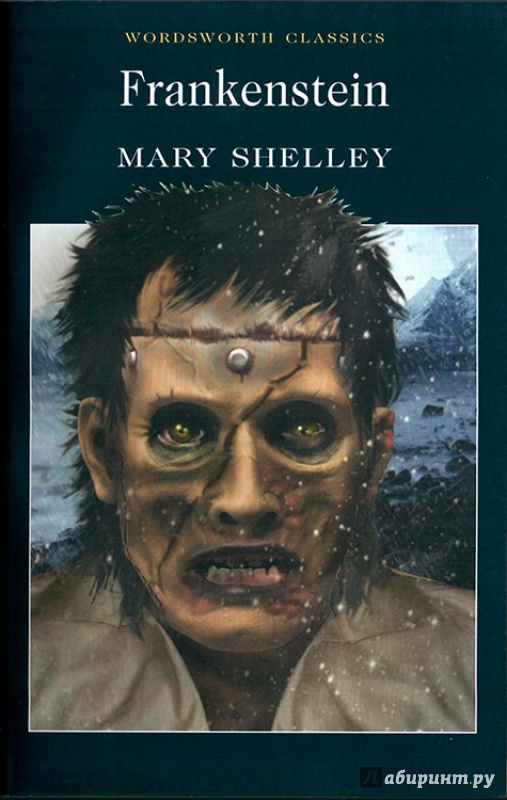 an analysis of individual and society in frankenstein a novel by mary godwin