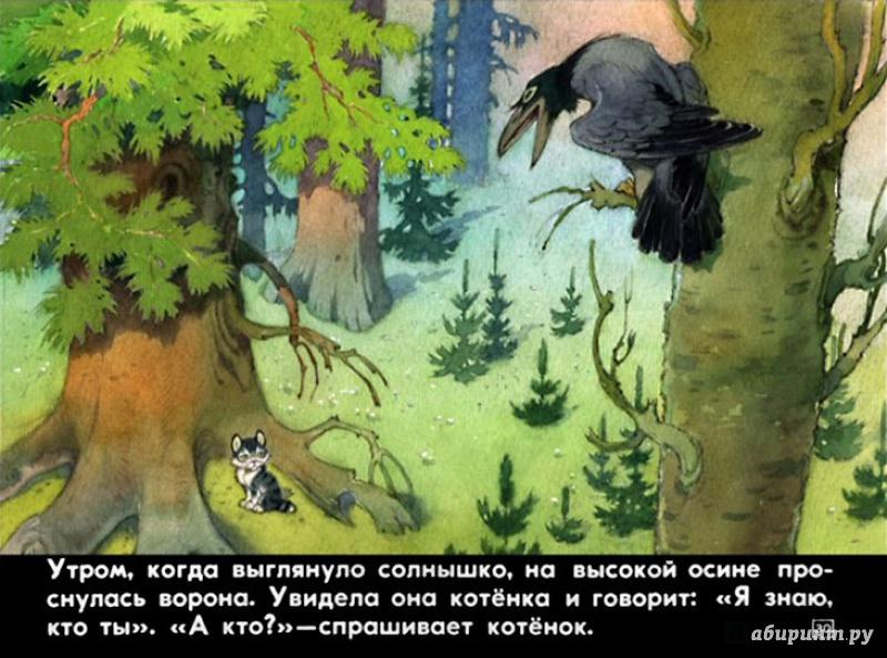 Иллюстрация 25 из 48 для Упрямый котёнок - Иван Белышев | Лабиринт - книги. Источник: Shurshun