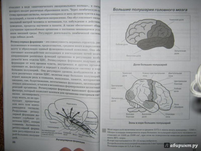 курс биологии человека.