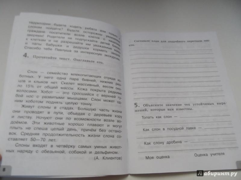решебник по русскому тренировочные и проверочные работы 4 класс михайлова с ю