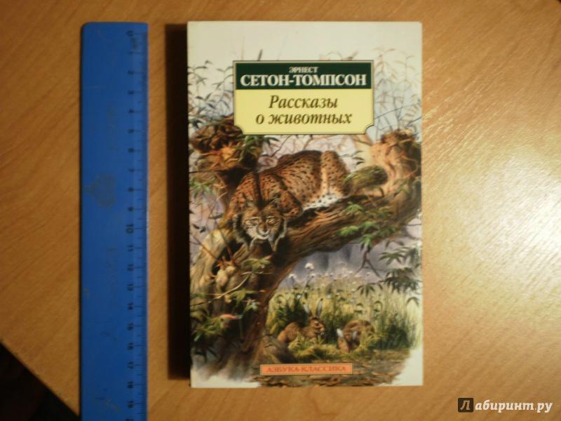Иллюстрация 1 из 21 для Рассказы о животных - Эрнест Сетон-Томпсон | Лабиринт - книги. Источник: Nanced Lovett