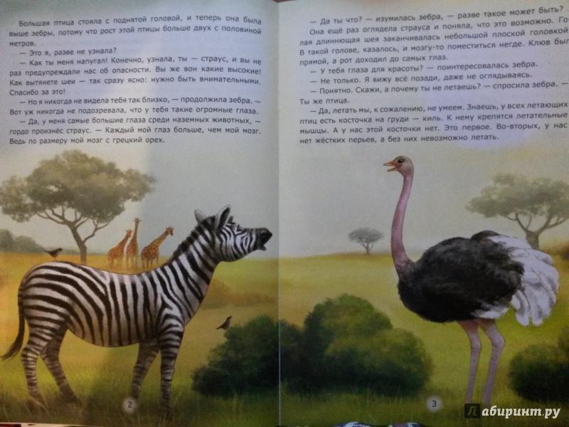 Иллюстрация 1 из 31 для Заботы страуса - Лариса Тарасенко | Лабиринт - книги. Источник: Бурмистрова  Елена