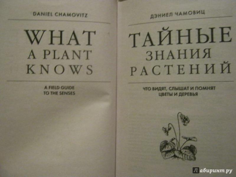 ДЭНИЕЛ ЧАМОВИЦ ТАЙНЫЕ ЗНАНИЯ РАСТЕНИЙ СКАЧАТЬ БЕСПЛАТНО