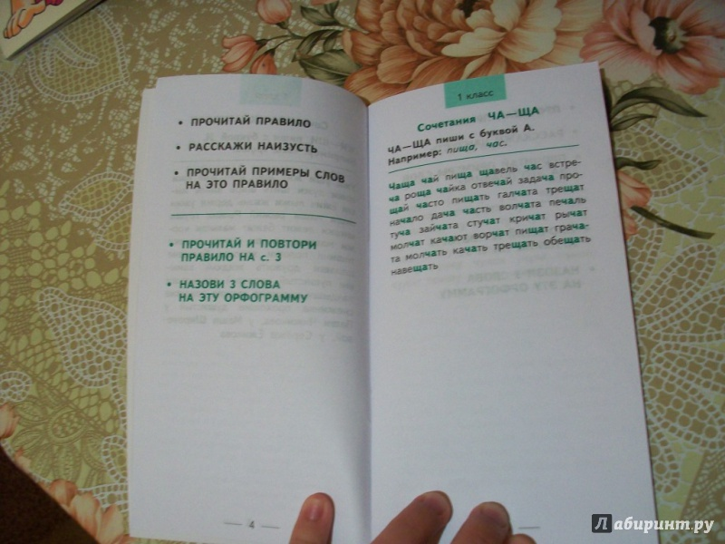 БЫСТРО ВЫУЧИМ ПРАВИЛА РУССКОГО ЯЗЫКА 1-4 КЛАССЫ СКАЧАТЬ БЕСПЛАТНО