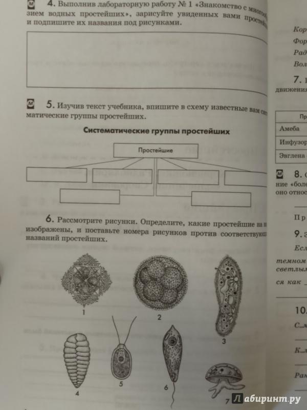 гдз биология латюшин шапкин учебник