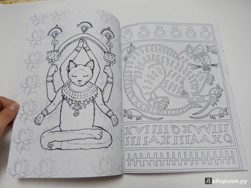 Иллюстрация 21 из 53 для Кототерапия. Раскраска-антистресс ...