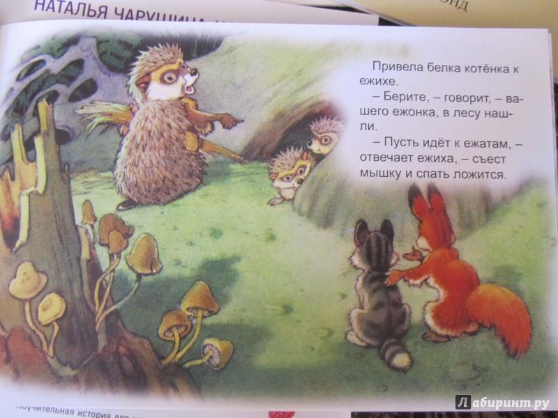 Иллюстрация 37 из 48 для Упрямый котёнок - Иван Белышев | Лабиринт - книги. Источник: Ладатко  Валерия Владиславовна