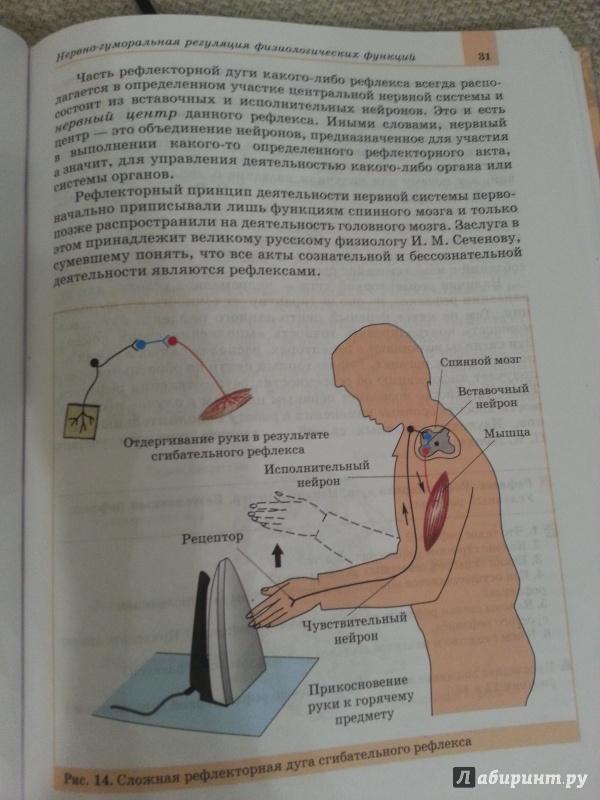 Биология батуева 9 класс