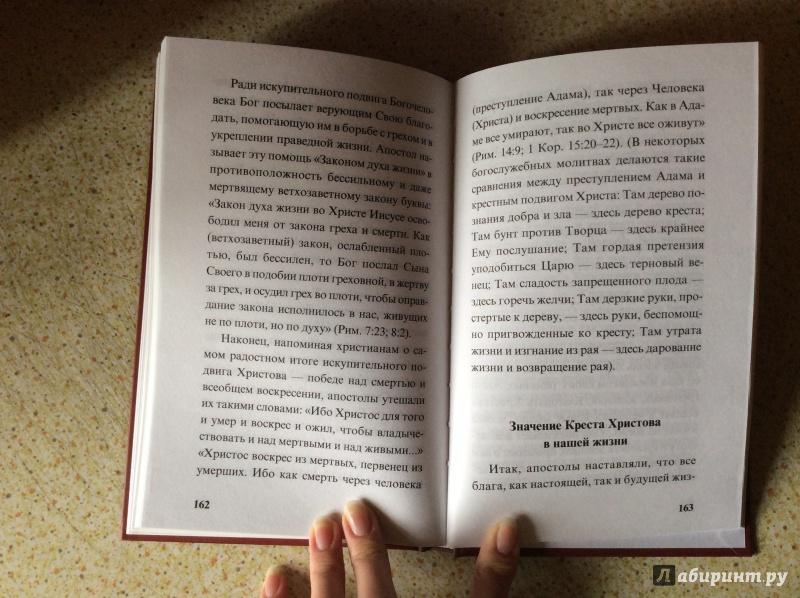 Иллюстрация 10 из 10 для Туринская Плащаница. Евангелие, написанное кровью   Лабиринт - книги. Источник: а.а.и.