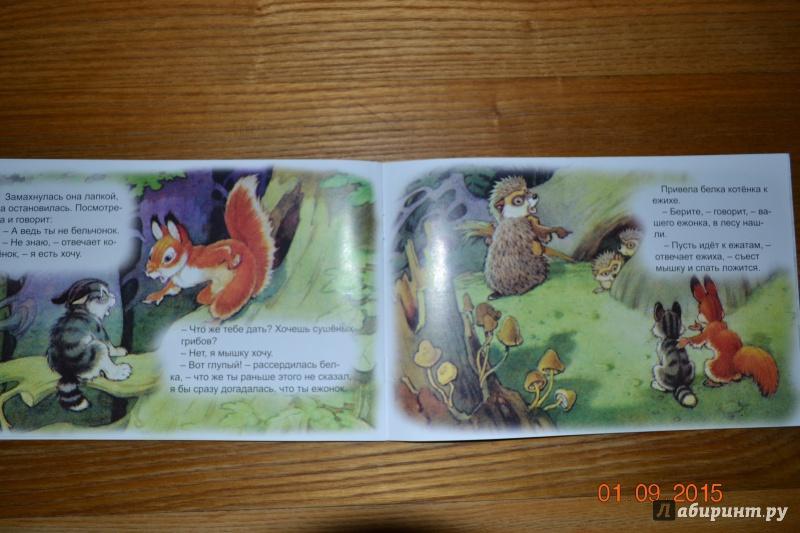 Иллюстрация 32 из 48 для Упрямый котёнок - Иван Белышев | Лабиринт - книги. Источник: Белоус Марина