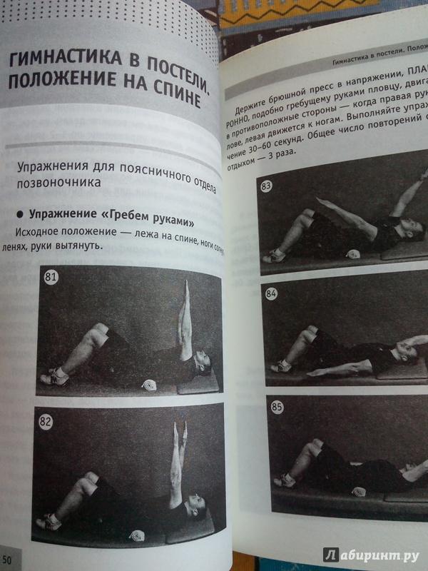 Семь суставов позвоночника zimmer суставы