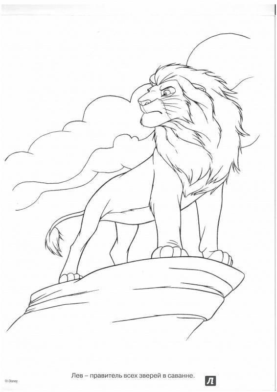 Иллюстрация 1 из 15 для Волшебная раскраска. Король Лев (№15014) | Лабиринт - книги. Источник: Lechman@list.ru