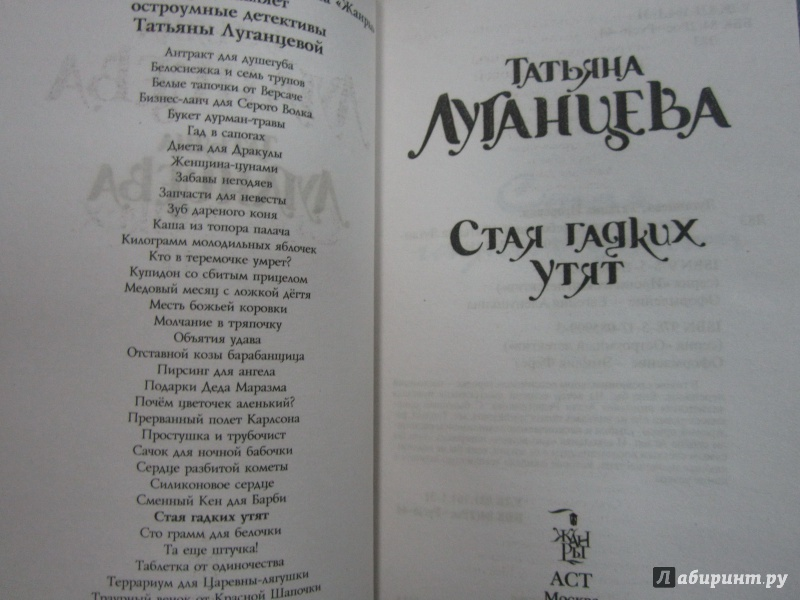Иллюстрация 1 из 6 для Стая гадких утят - Татьяна Луганцева | Лабиринт - книги. Источник: )  Катюша