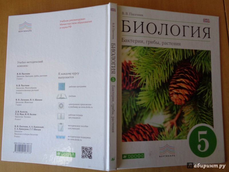 Гдз по биологии 5 класс пасечник бактерии грибы растения