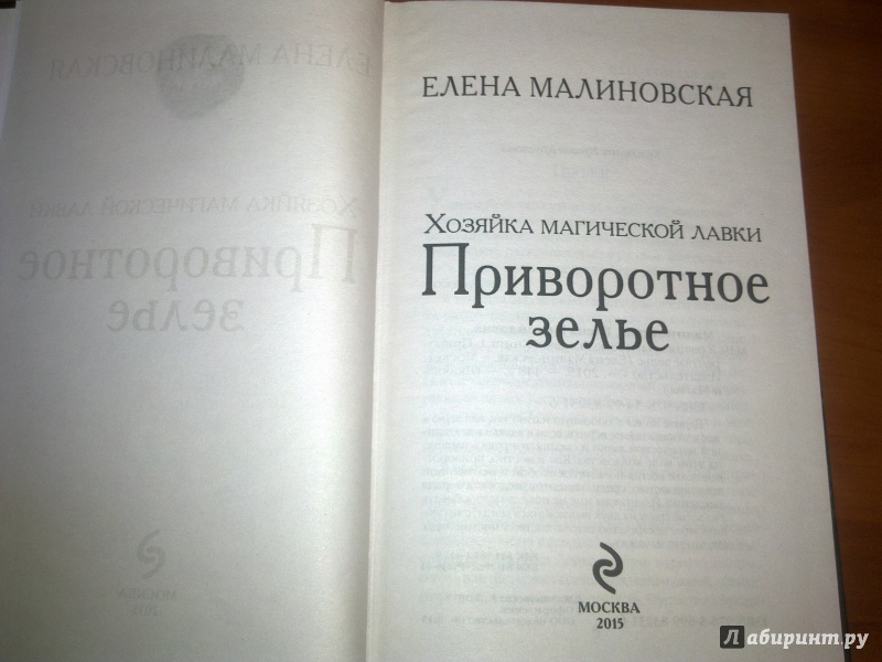 ЕЛЕНА МАЛИНОВСКАЯ ХОЗЯЙКА МАГИЧЕСКОЙ ЛАВКИ 2 СКАЧАТЬ БЕСПЛАТНО