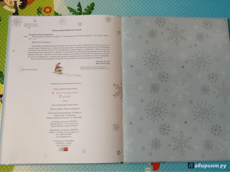 Иллюстрация 43 из 61 для В лесу родилась ёлочка - Раиса Кудашева | Лабиринт - книги. Источник: Рыженкова  Анна
