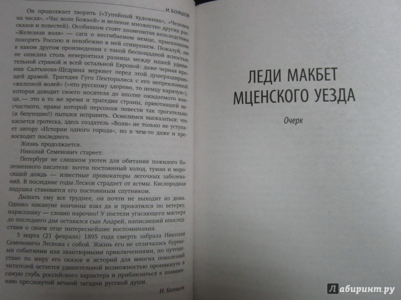 Иллюстрация 7 из 7 для Левша - Николай Лесков | Лабиринт - книги. Источник: )  Катюша