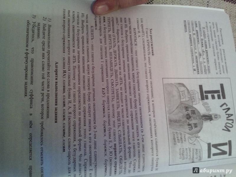 Иллюстрация 1 из 2 для ОГЭ-2016. Русский язык. Комплекс материалов для подготовки учащихся - Драбкина, Субботин | Лабиринт - книги. Источник: alzadorina