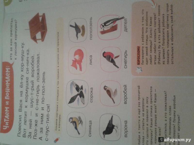 Иллюстрация 10 из 14 для Я читаю и понимаю текст - Ирина Мальцева | Лабиринт - книги. Источник: Козырева  Анна