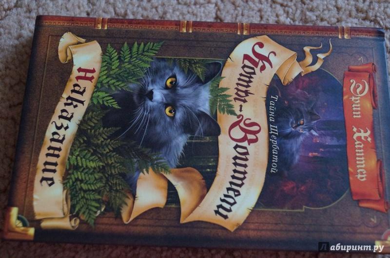 Скачать книгу коты воители тайна щербатой
