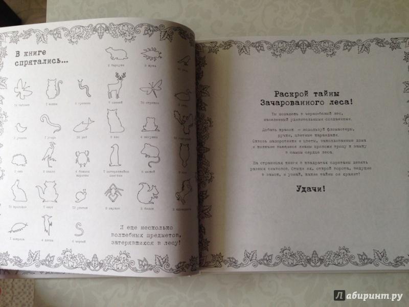 Сочинение по книге таинственный сад