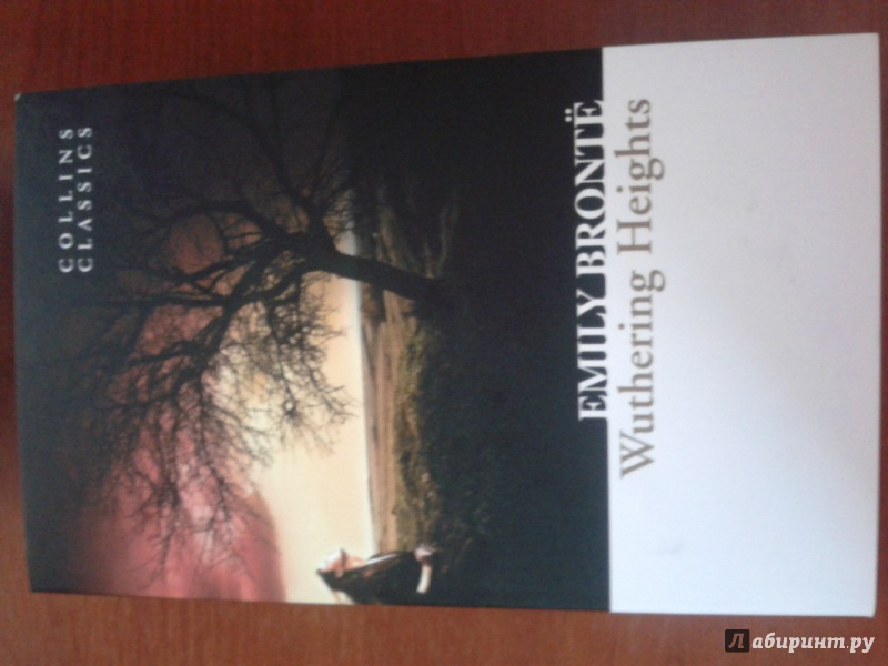 an analysis of the role of books in wuthering heights by emily bronte The first time i read wuthering heights, i hated it hated it i was in high school, and i was just beginning what would be a life-long love affair with 19th-century literature i had barreled through all of austen's novels and jane eyre, and i sat down with wuthering heights, expecting to be.