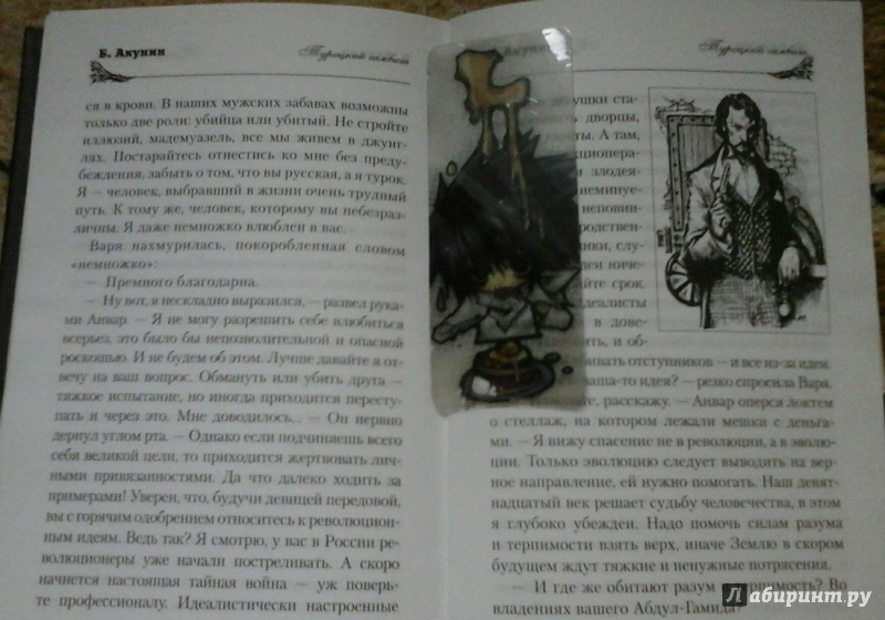 Иллюстрация 1 из 2 для Турецкий гамбит: Роман - Борис Акунин | Лабиринт - книги. Источник: Катрин