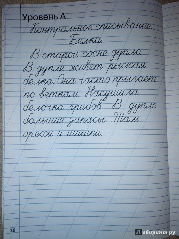 Гдз По Чистописанию 2 Класс Жиренко