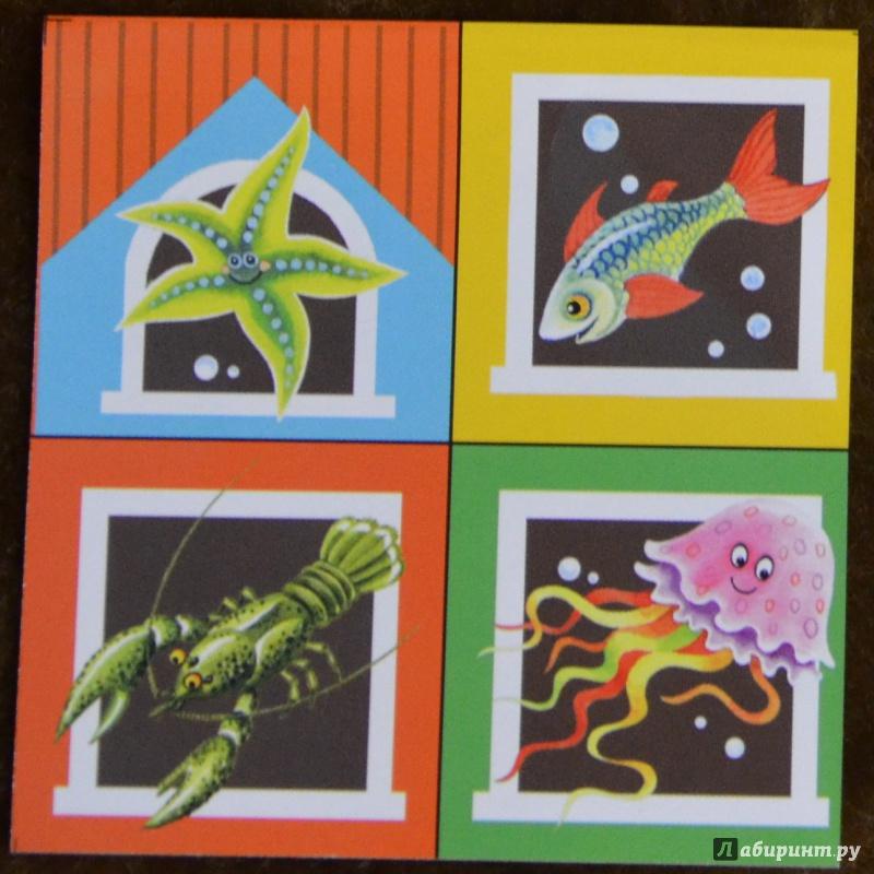 """Иллюстрация 38 из 53 для Кубики """"Baby Step. Лесные животные"""". 4 кубика, в ассортименте (87325-330)   Лабиринт - игрушки. Источник: Neko"""