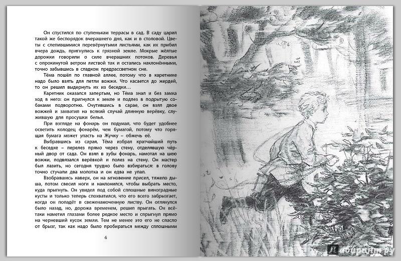 Иллюстрация 5 из 23 для Тёма и Жучка - Николай Гарин-Михайловский   Лабиринт - книги. Источник: Артемьева  Екатерина