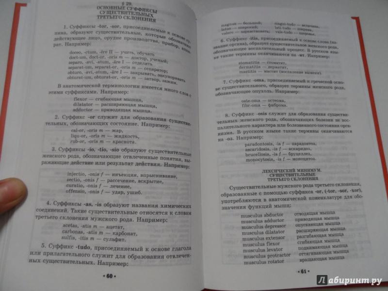 Решебник по латинскому языку цисык