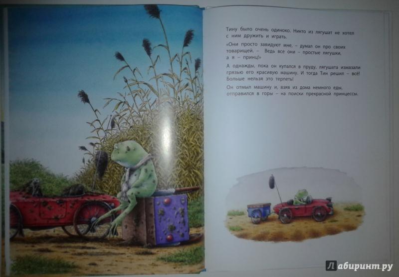 Иллюстрация 12 из 17 для Мой маленький принц - Берни Бос | Лабиринт - книги. Источник: молодцова  екатерина геннадьевна