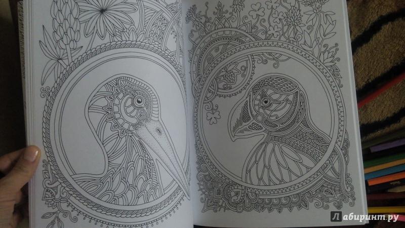 Иллюстрация 28 из 39 для Ветер уносит цветы. Книга ...