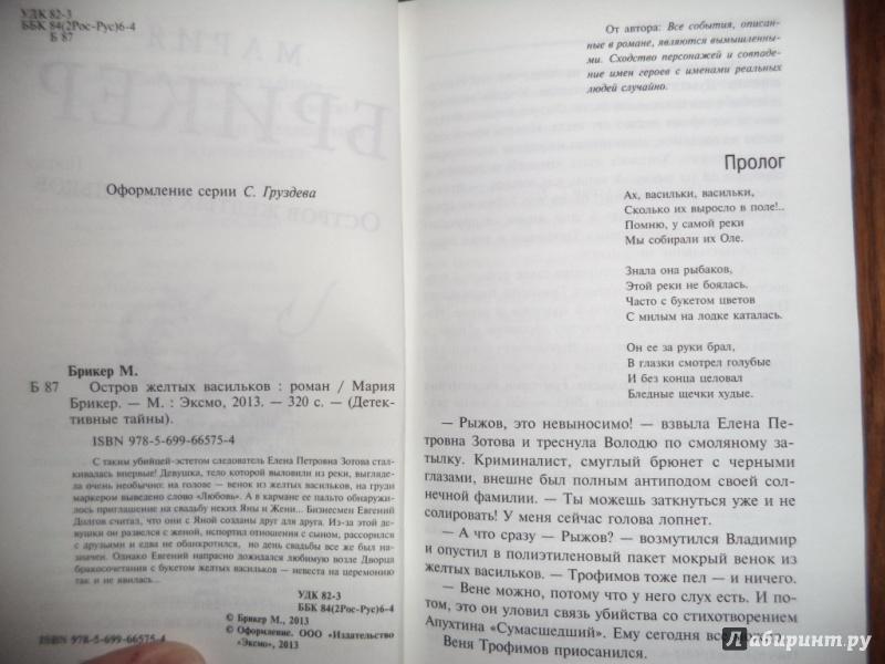 Иллюстрация 1 из 5 для Остров желтых васильков - Мария Брикер | Лабиринт - книги. Источник: Kirill  Badulin