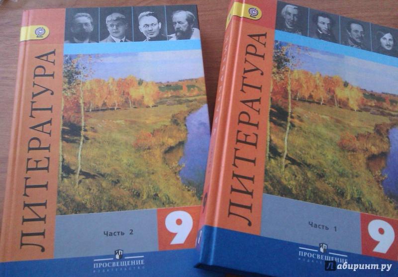 Литература 9 класс учебник гдз