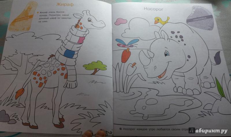 Иллюстрация 1 из 8 для Раскрась по образцу. Животные жарких стран | Лабиринт - книги. Источник: Кондрашева  Анна