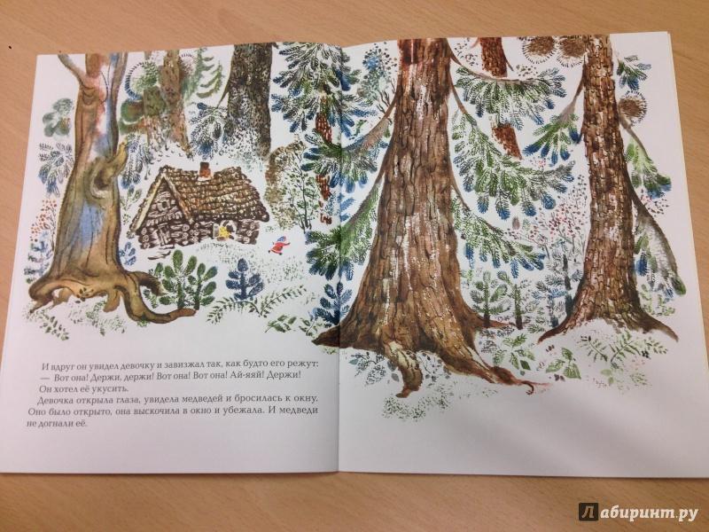 Иллюстрация 18 из 35 для Три медведя - Лев Толстой | Лабиринт - книги. Источник: Транжира
