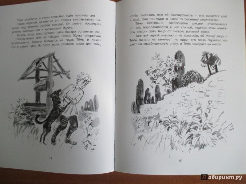 Иллюстрация 15 из 23 для Тёма и Жучка - Николай Гарин-Михайловский   Лабиринт - книги. Источник: Иванов  Евгений