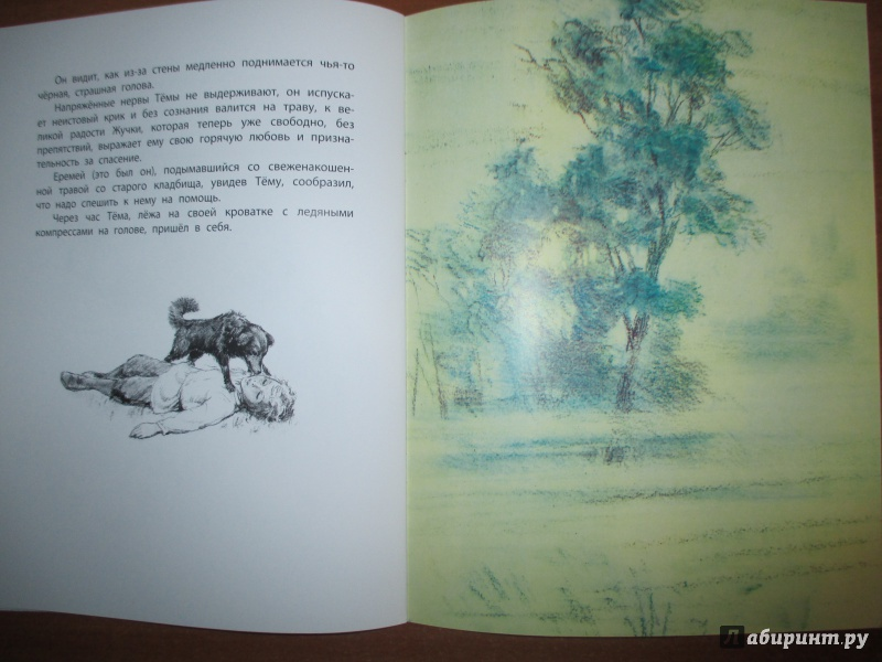 Иллюстрация 16 из 23 для Тёма и Жучка - Николай Гарин-Михайловский | Лабиринт - книги. Источник: Иванов  Евгений