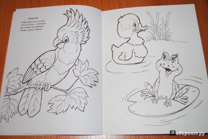 Иллюстрация 1 из 28 для Живая планета - Т. Коваль | Лабиринт - книги. Источник: Нади