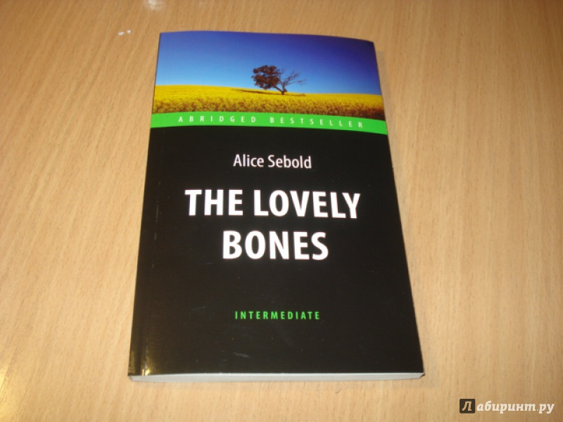 an analysis of the story in the book the lovely bones by alice sebold The lovely bones study guide contains a biography of alice sebold, literature essays, quiz questions, major themes, characters, and a full summary and analysis about the lovely bones the lovely bones.