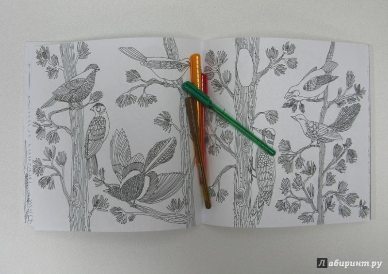 Иллюстрация 13 из 50 для Птицы счастья. Раскрась свой мир и добавь жизни цвета   Лабиринт - книги. Источник: Хегай Ольга Сергеевеа
