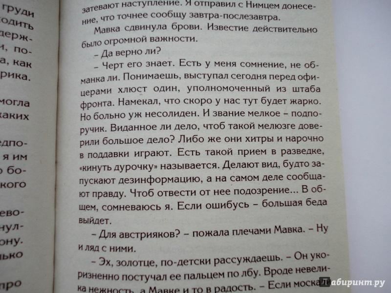 Иллюстрация 18 из 41 для Смерть на брудершафт. Гром победы, раздавайся! - Борис Акунин | Лабиринт - книги. Источник: blackbunny33