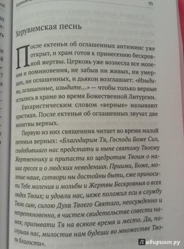 Иллюстрация 19 из 21 для Божественная литургия. Объяснение смысла, значения, содержания - Алексей Протоиерей   Лабиринт - книги. Источник: Алена